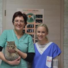 Veterinarska Ambulanta Škarica opozarja na zavržene živali in njihove žalostne zgodbe